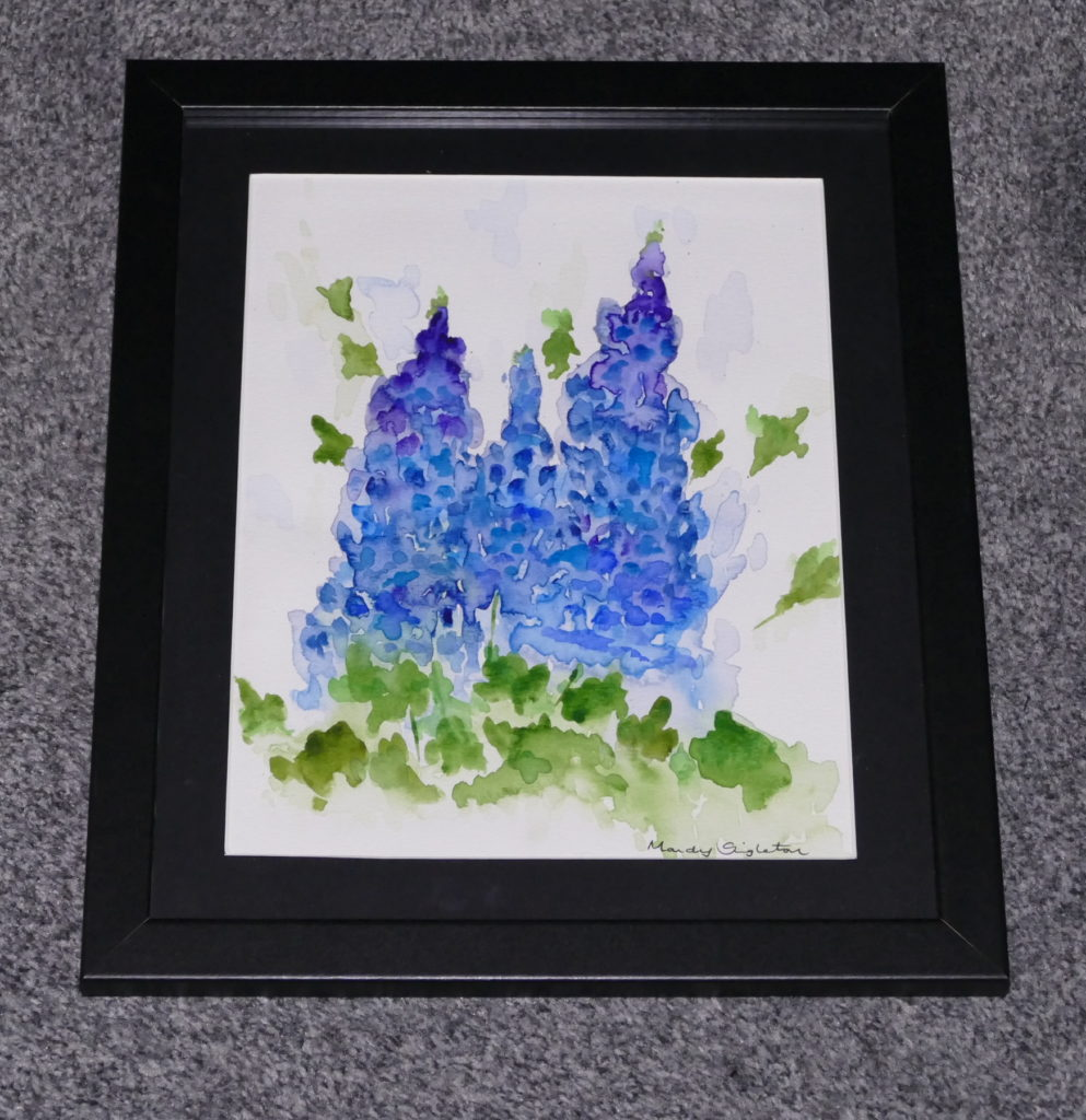 Blue Delphiniums Available to Purchase