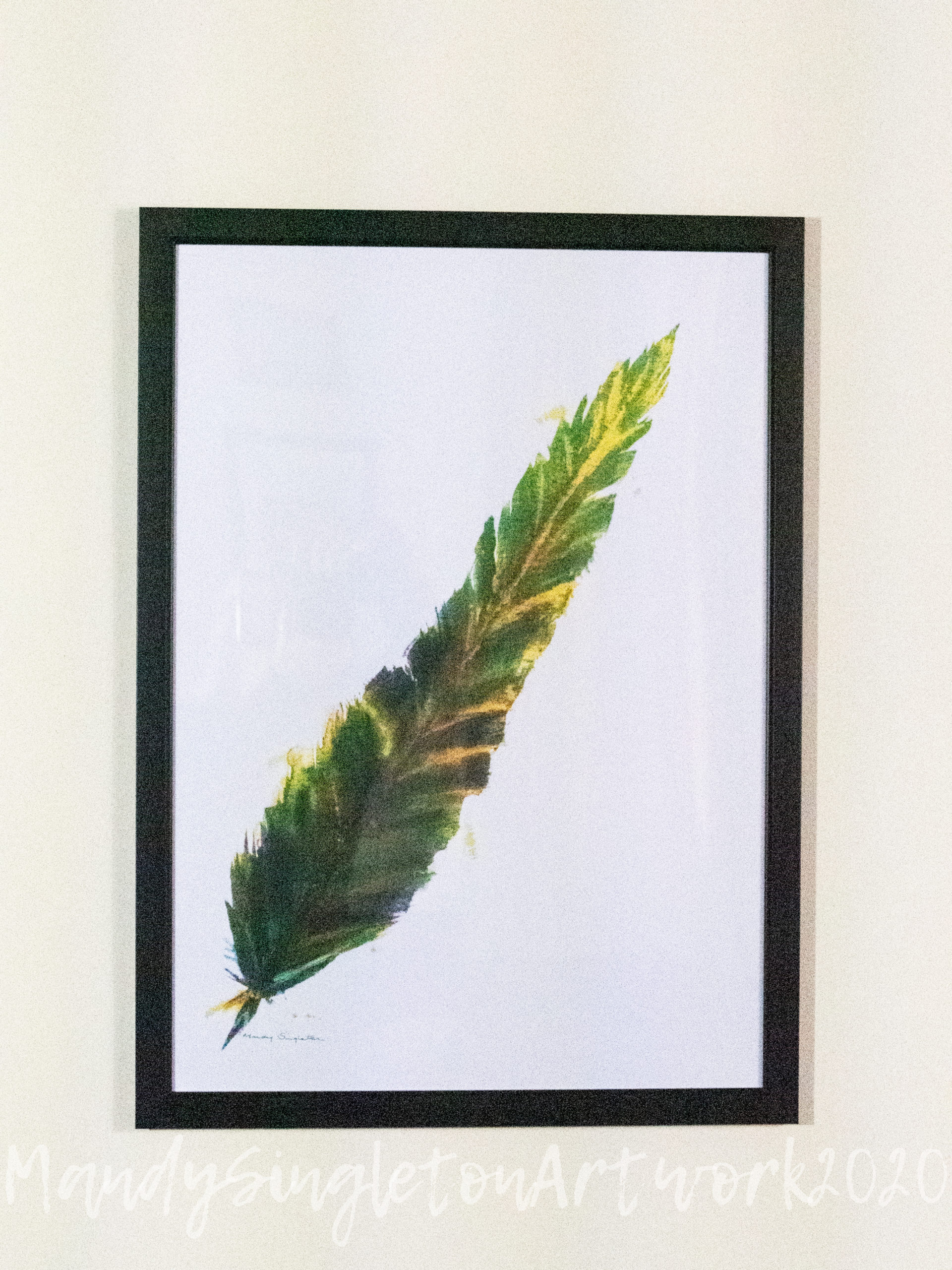 Green and Yellow Feather