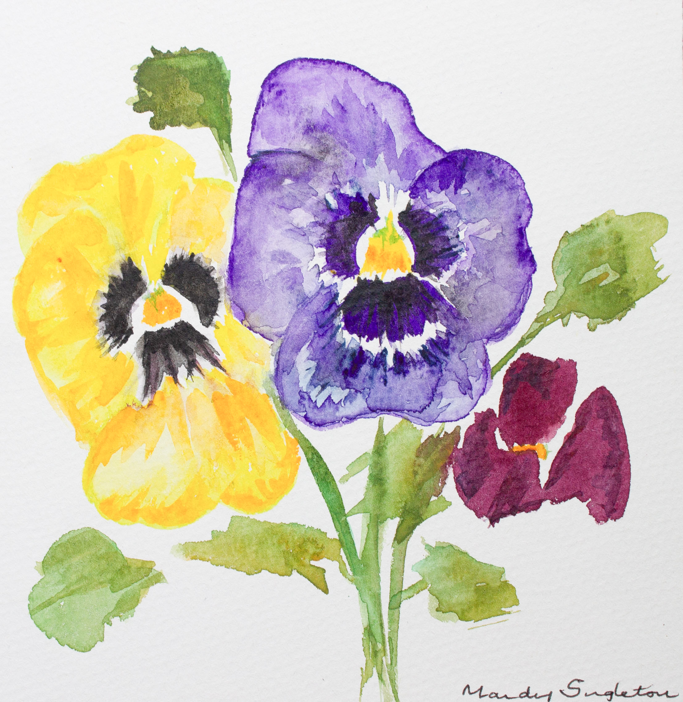 Trio of Pansies