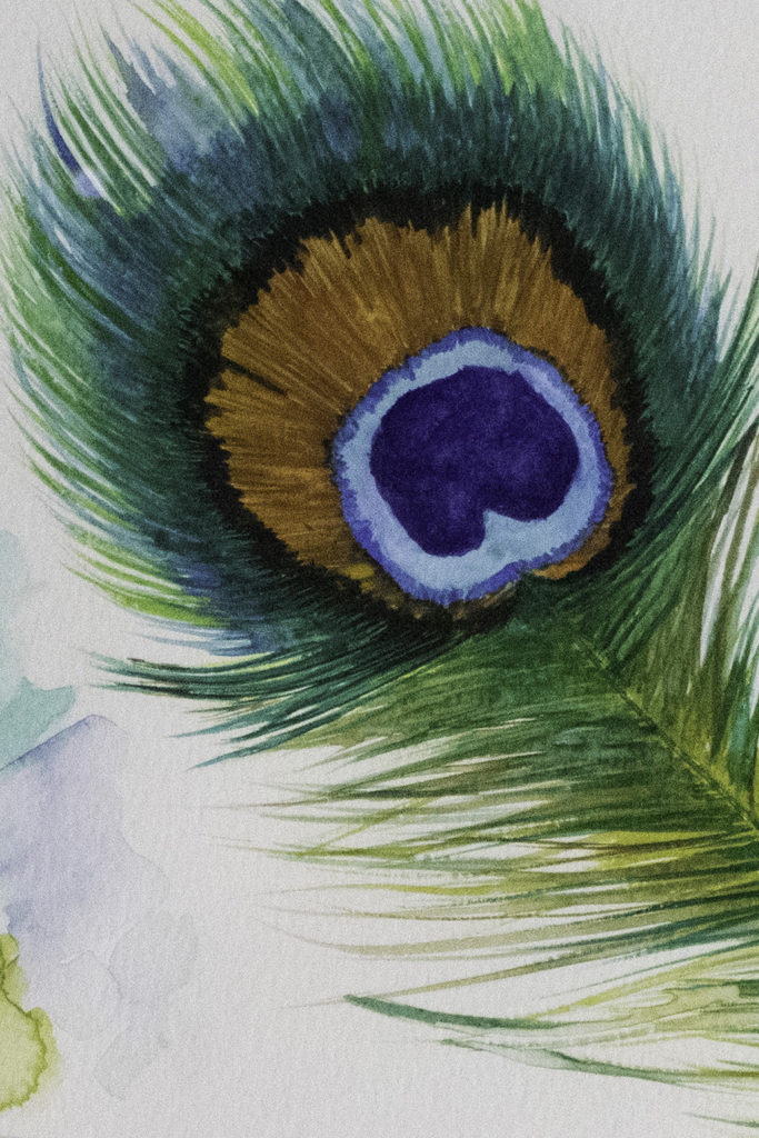 Peacock feather Tea Towel available to purchase