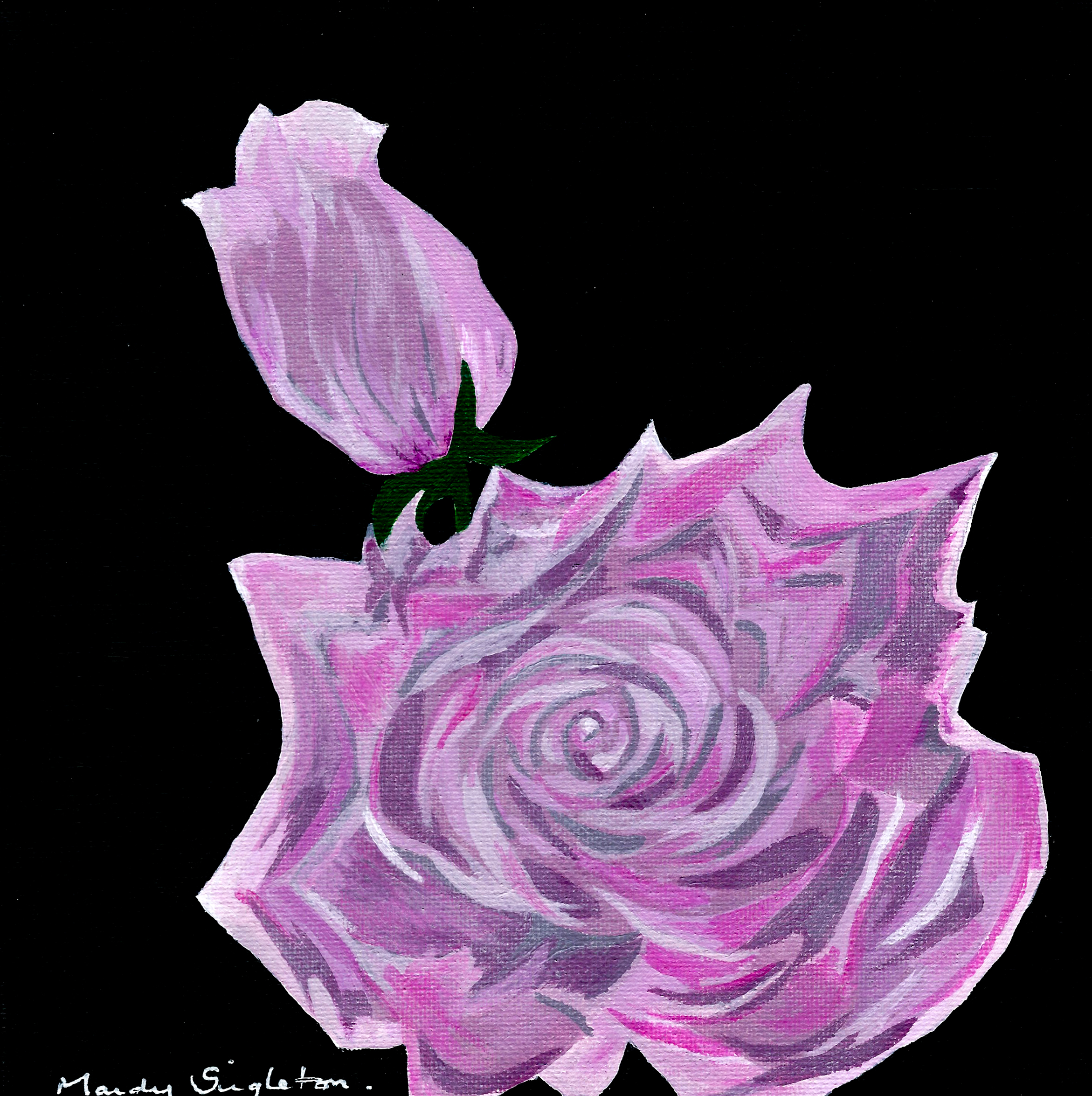 Pink Rose - Bold Flower Collection - Gallery